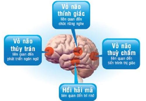 Những bài tập đơn giản giúp phát triển trí não trẻ 2