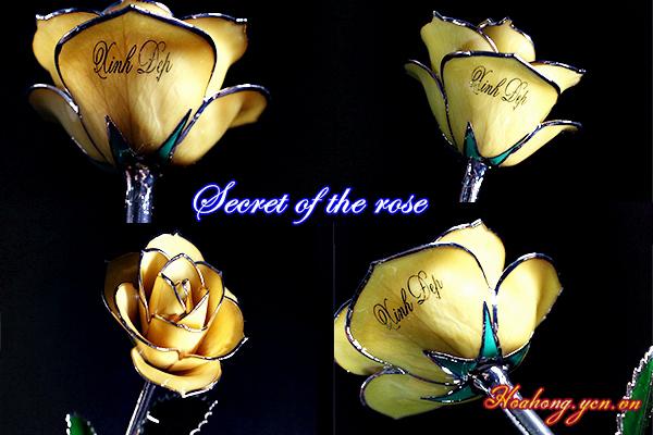 Quà tặng Valentine 14/2 ý nghĩa cho người yêu 2