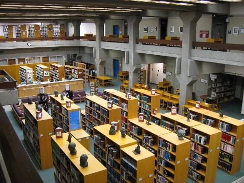 Cơ hội học bổng lớn khi học tại Cao đẳng Cộng đồng Lane, Hoa Kỳ - Ảnh 3.