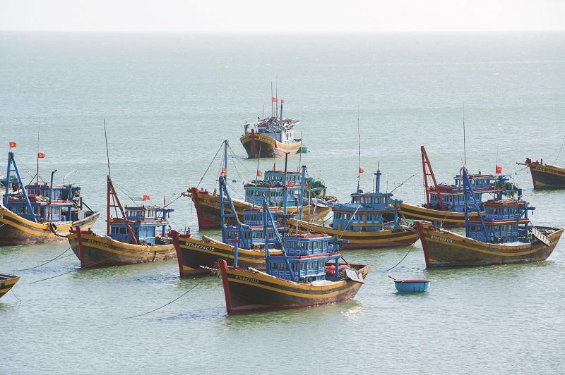 Tiềm năng ngành đánh bắt hải sản và tiêu thụ sản phẩm ngư, lưới cụ