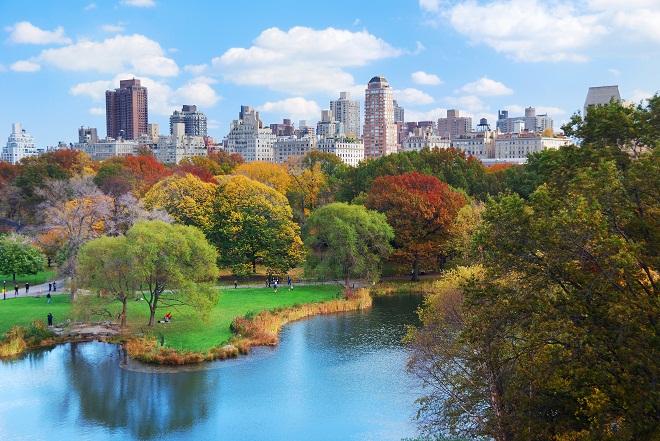 Đất lân cận Central Park New York là một trong những khu đất vàng đắt giá nhất - không của chỉ riêng nước Mỹ mà trên toàn thế giới.