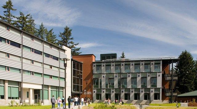 Cao đẳng Cộng đồng - Con đường dễ dàng xin visa du học Mỹ - Ảnh 2.