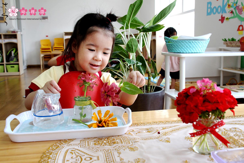 Tài liệu phương pháp Montessori về hệ thống giáo cụ2
